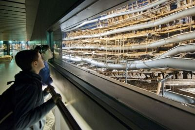 Mary Rose nominated for the European Museum of the Year Award